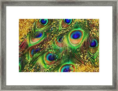 Buried Treasure, Fantasy Peacock Feathers Laden With Gold Framed Print
