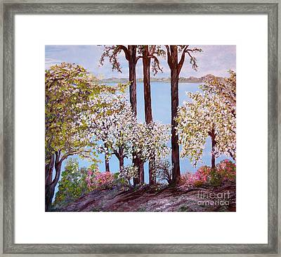 Savannah In Spring Framed Print