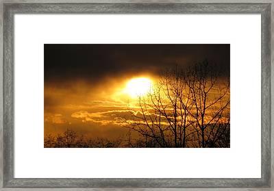 Burnaby Mountain Framed Print