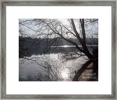Burnaby Walk Framed Print by Kim Prowse