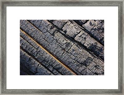 Burnt Bark Framed Print