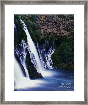 Burney Blues Framed Print