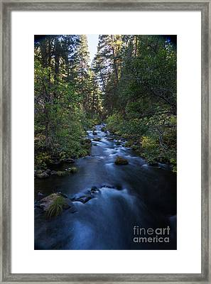 burney Creek #2 Framed Print