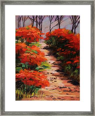 Burning Bush Along The Lane Framed Print by John Williams
