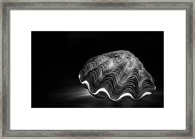 Burning Core, Dead Shell Framed Print