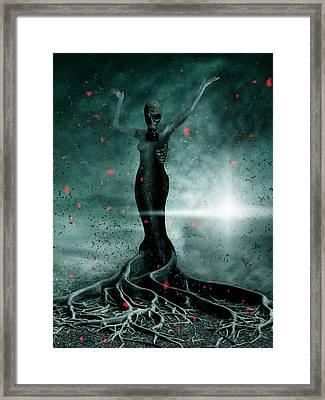 Burning Sakura Framed Print by Arvydas Butautas