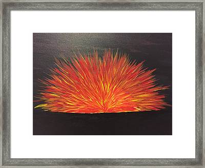 Burning Sun Framed Print