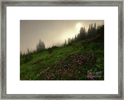Burning Through Framed Print