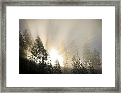 Burning Through The Fog Framed Print