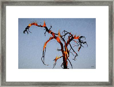 Burning Tree Framed Print