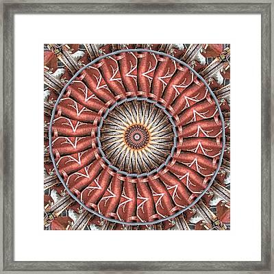 Burnished Framed Print by Wendy J St Christopher