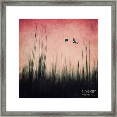 Burnt Ground Framed Print