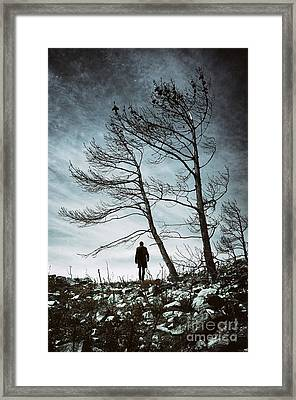 Burnt Land Framed Print by Carlos Caetano