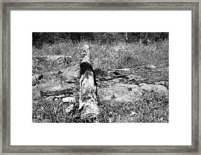 Burnt Log Framed Print by Kendall Tabor