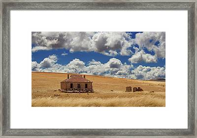 Framed Print featuring the photograph Burra by Tim Nichols
