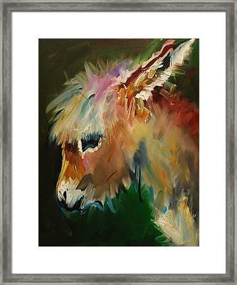Burro Donkey Framed Print by Diane Whitehead
