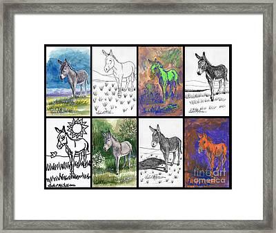 Burro Sampler #1 Framed Print