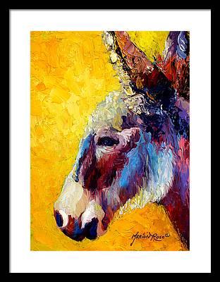 Donkey Framed Prints