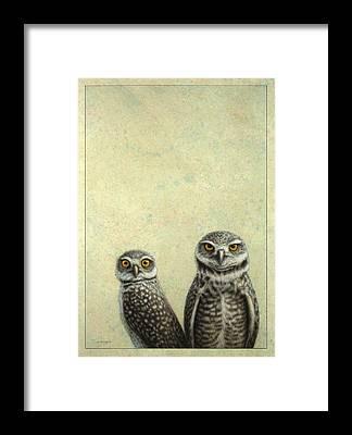 Burrow Owl Framed Prints