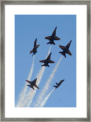 Burst Framed Print by Joseph Lawton