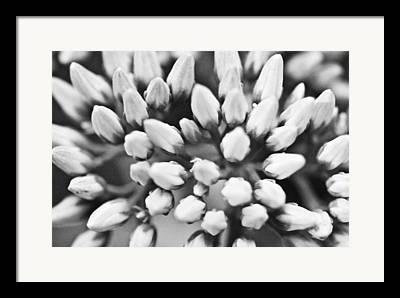 Ryan Kelly Framed Prints
