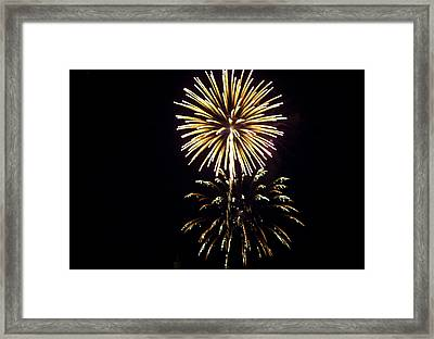 Framed Print featuring the photograph Burst by Tara Lynn
