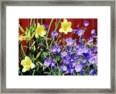 Bursting In Air Framed Print