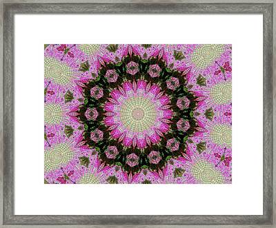 Bursting Out Framed Print by Cathy Blake