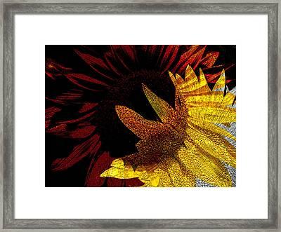 Bursting With Joy Framed Print by Lenore Senior