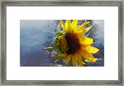 Bursting With The Joy Of Autumn Framed Print