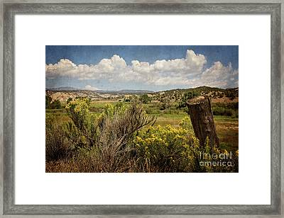 Bush Creek Framed Print