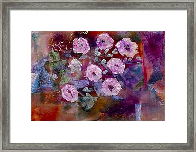 Bush Morning Glory Framed Print by Don  Wright