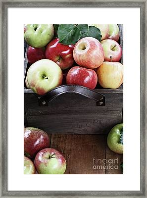 Framed Print featuring the photograph Bushel Of Apples  by Stephanie Frey