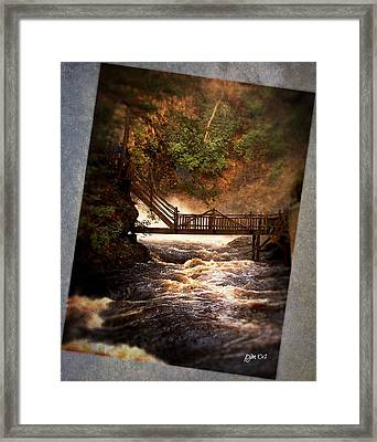 Framed Print featuring the photograph Bushkill Falls by Phil Mancuso