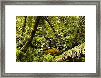 Bushwalker Hiking Over Log In Tasmanian Forest Framed Print by Jorgo Photography - Wall Art Gallery