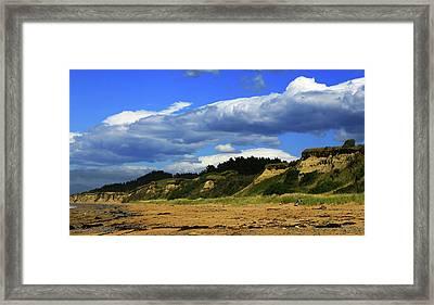 Framed Print featuring the photograph Bushy Beach by Nareeta Martin