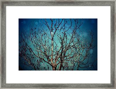 Framed Print featuring the photograph But I Remember.. by Joel Witmeyer