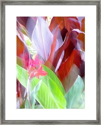 Butchart Gadens Overexposed Framed Print