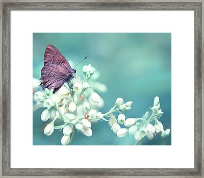 Framed Print featuring the photograph Buterfly Dreamin' by Mark Fuller