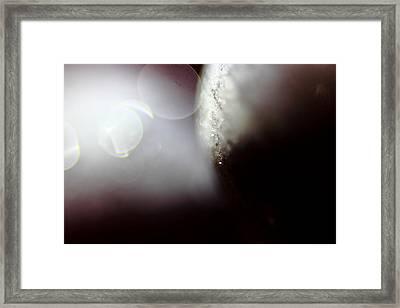 Butler's Crescendo Framed Print by Kreddible Trout