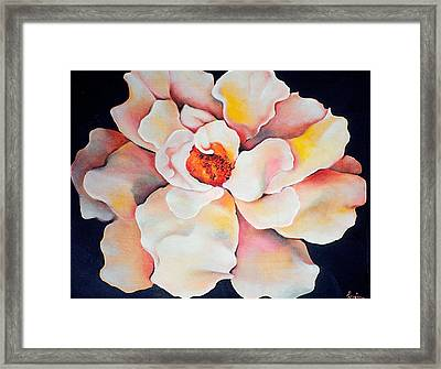 Butter Flower Framed Print by Jordana Sands