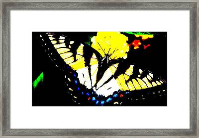 Butter Wow Framed Print