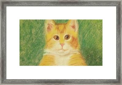 Framed Print featuring the drawing Buttercup by Denise Fulmer