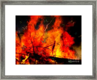 Butterflies And Flame Framed Print