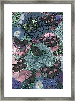 Butterflies Framed Print by JQ Licensing