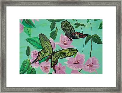 Butterflies In Flight Framed Print by Martha Mullins