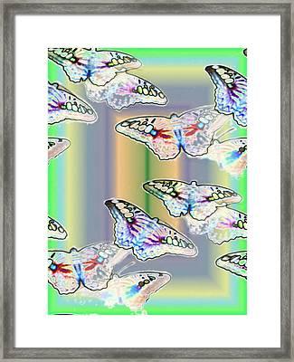 Butterflies In The Vortex Framed Print