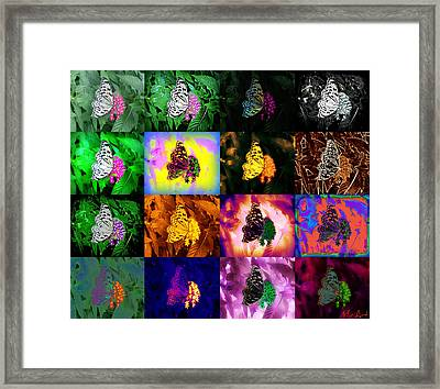 Framed Print featuring the photograph Butterflies by Miriam Shaw