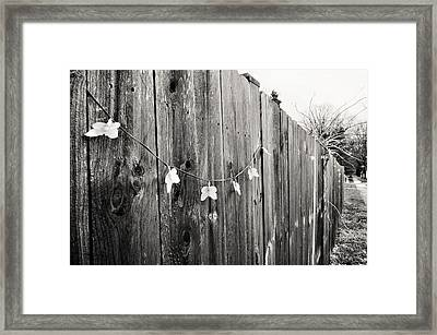Butterflies On A Rustic Fence Framed Print