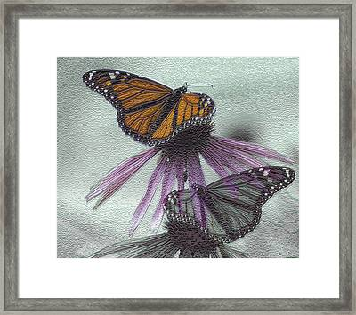 Butterflies Under Glass Framed Print by Evelyn Patrick